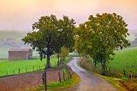 France, Auvergne, Cantal, autumn near Saint Constant.