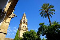 View of the tower of Cordoba Mosque in Spain.