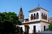 The Mosque-Cathedral bell tower from the the Plaza de Agrupación de Cofradias.City of Cordoba, Andalucia, Spain, Europe.