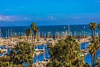 Harbor, Santa Barbara, California USA.
