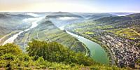 bend of the Moselle river near village Bremm, Germany, panorama view with clouds of morning fog above the river valley.