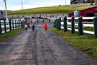 Running to the horses. Three young kids run towards the horse paddock at a farm on a lovely autumn afternoon. They have just finished petting the goat...