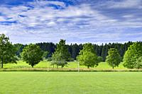 Soccer goal in the countryside in springtime, Bavaria, Germany