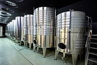 Txakoli wine, Bodega Katxiña, Orio, Gipuzkoa, Basque Country, Spain, Europe