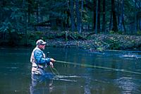 Fly fisherman casting for steelhead trout in the Pere Marquette River near Walhalla, Michigan, USA.