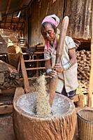 Kayan Lahwi woman with brass neck coils and traditional clothing pounding rice in a wooden mortar. The Long Neck Kayan (also called Padaung in Burmese...