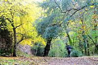 Las Batuecas Natural Park. Salamanca Province. Castilla y Leon. Spain