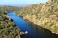 Tajo river. Azután. Toledo province. Castilla-La Mancha. Spain