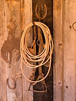 A cowboy's lariat or rope hangs with an old leather bridle from a horseshoe on the side of the tack barn on a ranch in Utah.