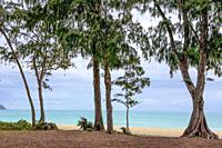 Fame Oahu Beaches.