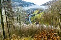 Nebel im Tal von Lerbach, Osterode am Harz, Niedersachsen, Deutschland   fog at the Lerbach valley, Osterode am Harz, Lower Saxony, Germany.