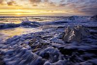 Broken ice from washed up Icebergs on Jokulsarlon black beach at sunset Jokulsarlon South east Iceland.