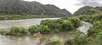 landscape with river Buller stream with lush vegetation on shores, shot in bright cloudy spring light near Inangahua Junction, West Coast, South Islan...