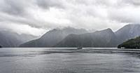 landscape with low clouds on lush vegetation at fjord shore, shot in cloudy bright light at Milford Sound, Southland, South Island, New Zealand.