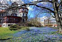 Europe, Poland, Lodz, Historic Villa of Reinhold Richter in park named after the bishop Michal Klepacz in the city center, park belongs to Lodz Univer...