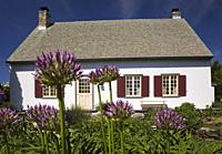 Old 1772 white with beige and burgundy trim French regime style residential home with purple Allium giganteum 'Globemaster' flowers in border in front...