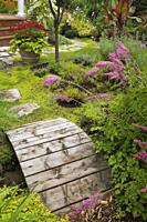 Pink Astilbes next to a wooden footbridge and flagstone path leading to a planter with red Pelargonium - Geraniums and Ipomoea batatas Morning Glory i...