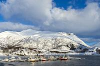 View of the fishing harbor with fishing boats at Sildpollnes Sjocamp near Svolvaer on Austvag Island in the Lofoten Islands, Nordland County, Norway.