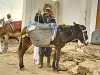 man loading saddle bags on his donkey at the market at Ida Ougourd Market, near Essaouira, Morocco.