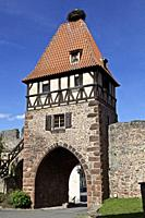 gr5, the witches tower with stork's nest at the top is a gothic door which dates from the 15th century, municipality of Chârenois. Bas Rhin, Alsace, F...