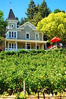 The St Clement winery, in the Napa Valley, is housed in a historic Victorian home.