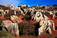Cerro del Hierro mines. Sierra Norte de Sevilla natural park.
