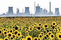 PiteÈ. ti Romania, The PiteŠŸti Sud Power Station, a large thermal power plant and sunflower fields.