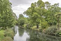 cityscape with lush vegetation on shores reflecting on Avon river waters at Botanic Gardens, shot in bright spring light at Christchurch, South Island...