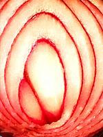 Cut onion. Close view.