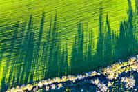 Agricultural landscape. Aerial view. Aranarache area. Navarre, Spain, Europe.