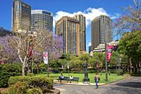 First Fleet Park in The Rocks area at Circular Quay in Sydney New South Wales, Australia.