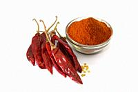 Dried red chilli and powder.