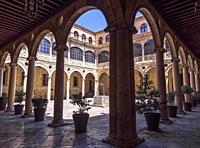 Claustro del Palacio de los Guzmanes. León. Castilla León. España.