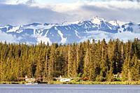 Homer, Kenai Peninsula, Alaska, U. S. A.
