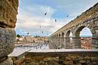 Swifts flying over the Roman aqueduct. UNESCO World Heritage Site. Segovia. Castile and Leon. Spain.