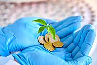 Plant and coins in hands, Chemical Laboratory, Agricultural and environmental research, Araba, Basque Country, Spain