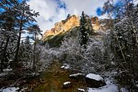 Pyrenees: Arazas river along snowy alpine landscape in the National park of Ordesa and Monte Perdido (Huesca province, Aragon region, Spain)