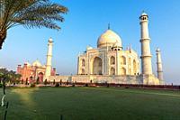 Taj Mahal view from the green garden, India, Agra.