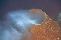 Spawning Barrel Sponge (Xestospongia testudinaria), Suanggi Island dive site, Banda Islands, Indonesia, Banda Sea.