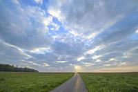 Meadow with road at sunrise.