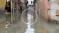 "A woman walking out from her home in Castello Quarter during the so called """"acqua alta"""" high tide. Venezia. Italy."