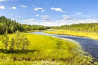 Around Kuhmo, Finland.