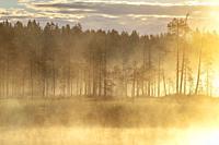 Lake in Varitus, Lentiira, Finland.