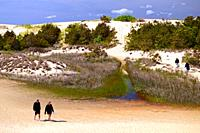 An adult couple walks in the lush sand dunes of Jockey Hollow State Park on the Outer Banks of North Carolina.