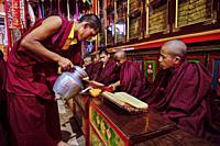 Nepal, Kathmandu valley, Bodnath village, Tsechen Shedup Ling Sakya Tharig tibetan monastery, buddhist ceremony.