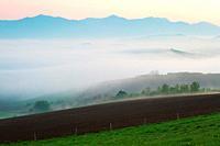 Foggy rural landscape of Turiec region, Slovakia.