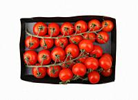 Fresh organic cherry tomatoes isolated on white background. The cherry tomato is regarded as a botanical variety of the cultivated berry, Solanum lyco...