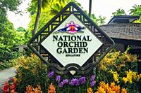 National Orchid Garden at the Singapore Botanic Gardens, Singapore, Republic of Singapore.