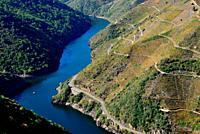 Miradoiro de Matacas. Canyon of the Sil river. View of Sil river, Ribeira Sacra, Matacas, Paradela, Orense, Spain.