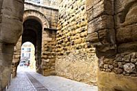 Ingresso della vecchia città chiamato porta sevilla. Carmona, Andalusia. Spagna.